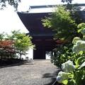 高野山大(だい)門