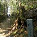 写真: 山の辺の道
