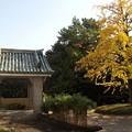 写真: 徳川美術館