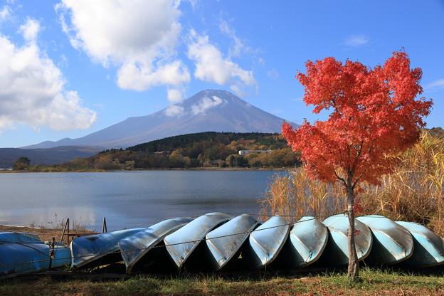 富士と紅葉2