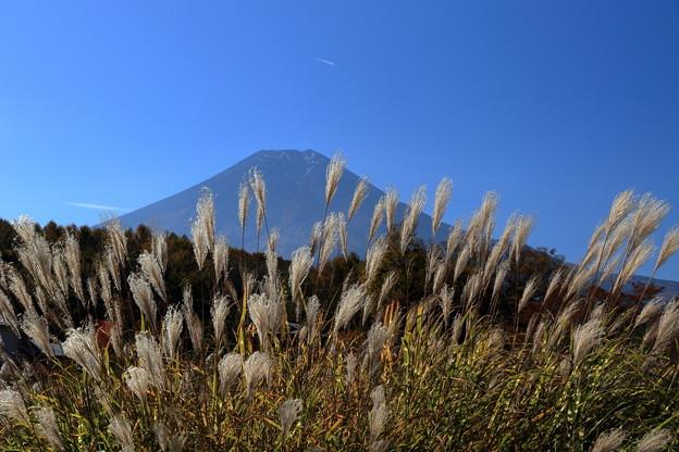 写真: 忍野からの富士山1