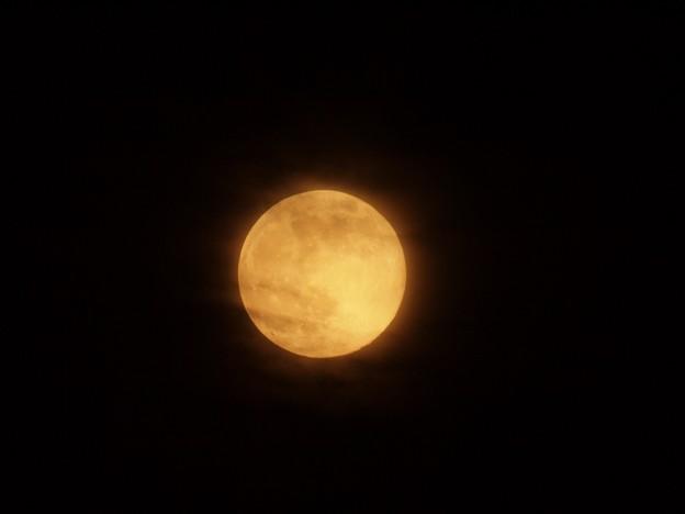 苺月(雲練乳がけ)