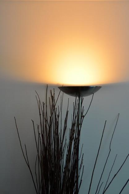 「第120回モノコン」Torchiere Lamp