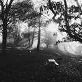 The Morning of Blue Ridge Parkway IV 10-14-17
