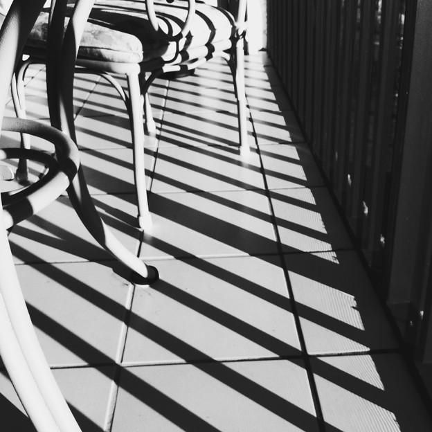 Photos: Hipstamatic_LongIsland_i4