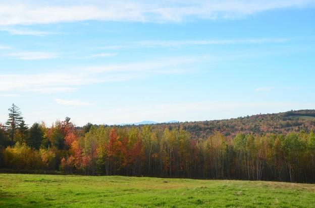 写真: The Mountain and the Woods 10-19-17