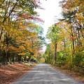 Kimball Pond Road Vienna Maine 10-19-17