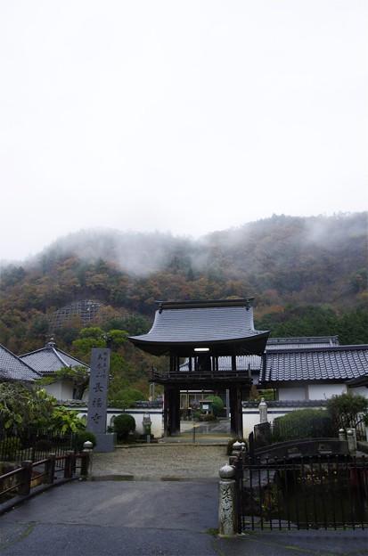 氷雨降る美作長福寺