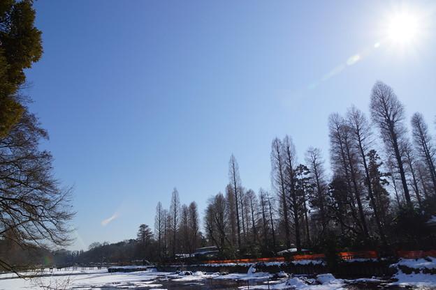 雪の降った朝は空気が澄んだように感じる