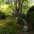 写真: 滴水庵の前庭