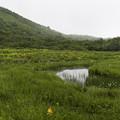 写真: 黒菱平・鎌池