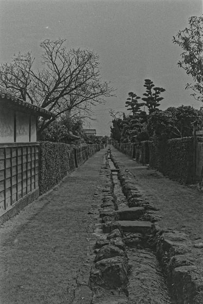 1988.03_024