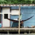 写真: 森の隠れ家