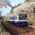 写真: さくら駅