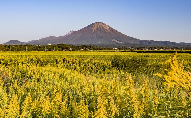 写真: 大山之秋