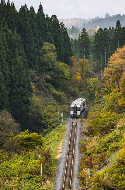 Photos: <鳴子號> 陸羽東線 キハ110系