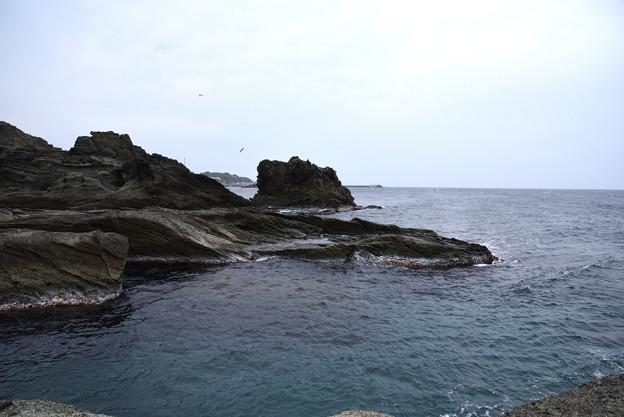 写真: 千畳敷と日本海