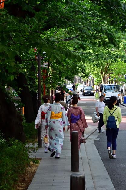 2017_0521_160039 木屋町通
