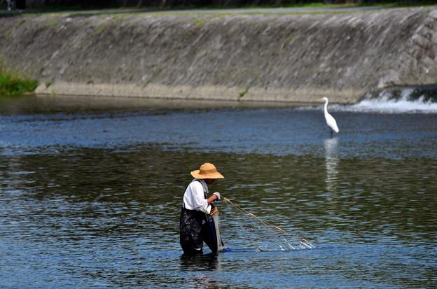 2017_0924_112324 鮎漁