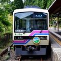 Photos: 2017_1001_121701 叡山電車 813-814