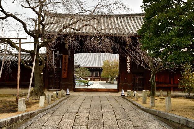 2018_0120_123003 妙覺寺