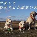Photos: ごあいさつ