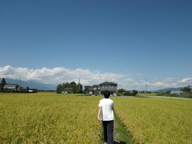 O田家周辺