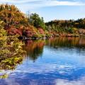 写真: 白駒池の紅葉
