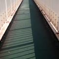 歩道橋にて