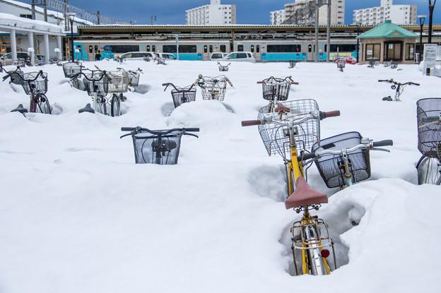 写真: 青森駅