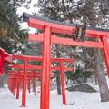 Photos: 伏見稲荷神社