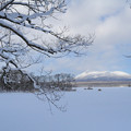 北海道 大沼公園