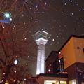 Photos: 五稜郭タワー