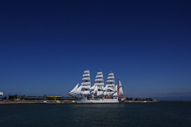 DSC_4932  海王丸総帆展帆