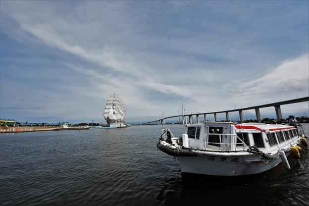 DSC_9717 海王丸と遊覧船