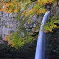 写真: ☆滝を彩る