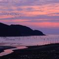 写真: ☆紫の黎明