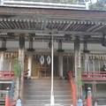 写真: 日吉神社の狛犬