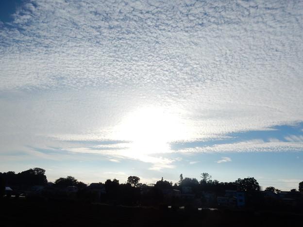 散りばめられたウロコ雲