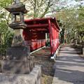 Photos: 石灯籠と鳥居
