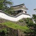 櫓と白壁(臼杵城公園)