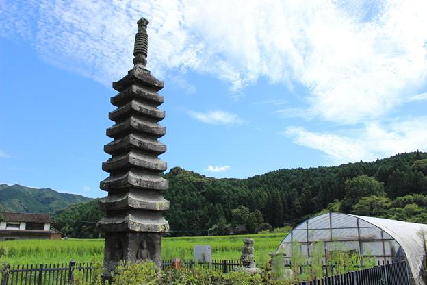 写真: 九重塔