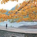 写真: 「原尻の滝」の秋2