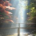 写真: 光芒
