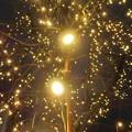 Photos: 光の粒