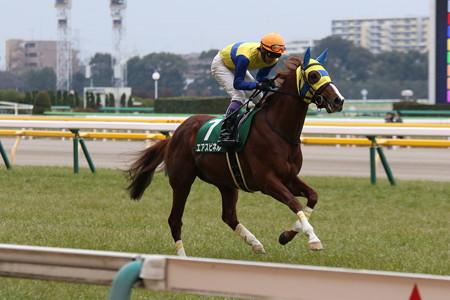 エアスピネル 返し馬(17/02/05・第67回 東京新聞杯)