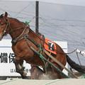 オレノタイショウ(17/04/09・15R・平成29年度第1回能力検査)