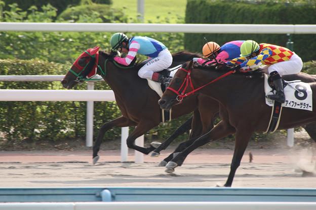 ウォーターメアヌイ レース(16/07/30・12R)