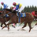 クインザドリーム レース(17/05/04・中日スポーツ杯 第56回 駿蹄賞)