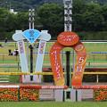 写真: 東京競馬場 ゴール板(17/05/14・第12回 ヴィクトリアマイル)